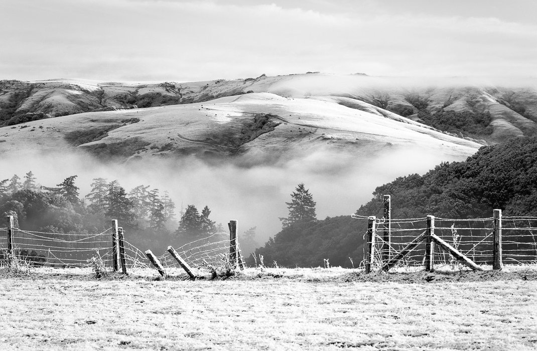 Marty Knapp | Snow & Ranch Fence | Point Reyes Station, CA | 2014